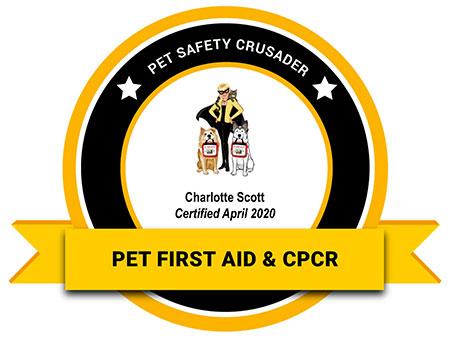 Pet First Aid and CPCR badge